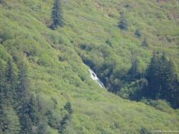 Juneau waterfall as seen from Norwegian Pearl.jpg