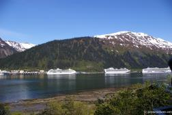 Three cruise ships in the distance as seen from Homestead Park Juneau.jpg