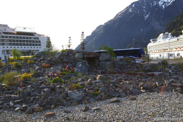 Rocks and flowers at the Juneau cruise pier.jpg